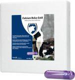 Calcium bolus gold - 12 stuks | Kuiper Koekange