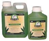 Excellent Shampoo Aloe Vera (01) 500ml