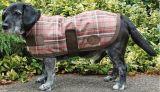 Hondendeken Thor, Brownie geruit maat 50 | Kuiper Koekange