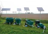 Mobiele solar weidedrinkbak SWT 1001 | Kuiper Koekange