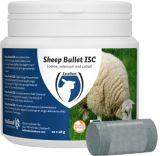 Sheep Bullet ISC voor ooien - 20 stuks | Kuiper Koekange